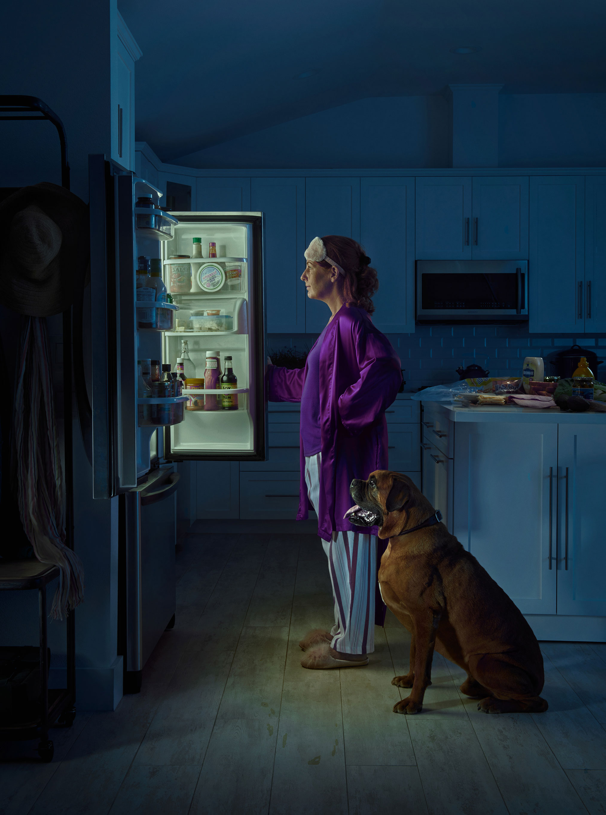 рекламная кампания успокаивающего лечебного CBD-средства для собак / фото 04