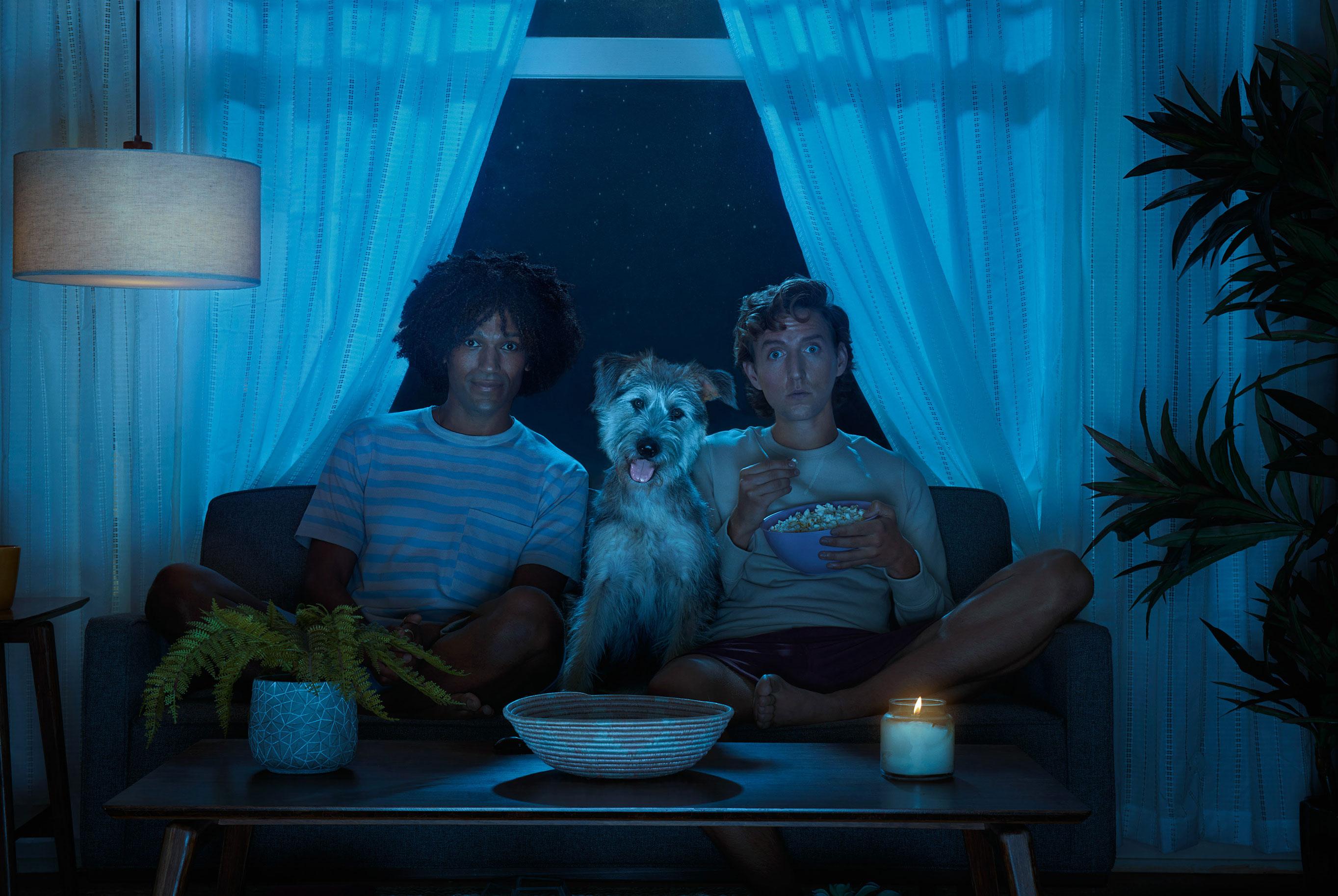 рекламная кампания успокаивающего лечебного CBD-средства для собак / фото 08