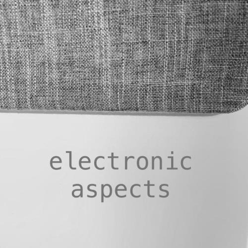 Electronic Aspects XVII (2021)