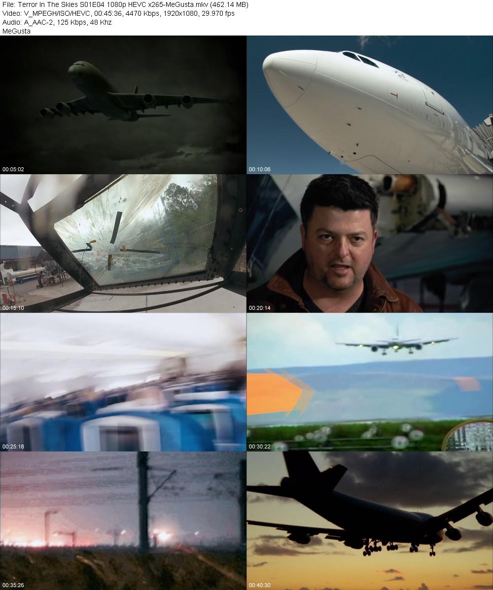 234933368_terror-in-the-skies-s01e04-1080p-hevc-x265-megusta.jpg