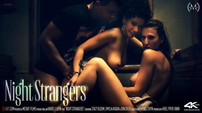 Emylia Argan - Night Strangers (2021 SexArt.com MetArt.com) [FullHD   1080p  1.54 Gb]