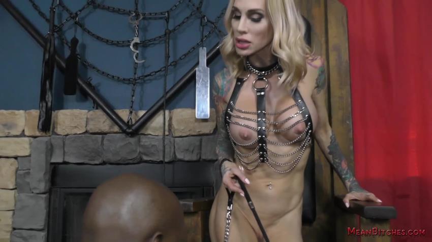 Mean Bitches - Sarah Jessie
