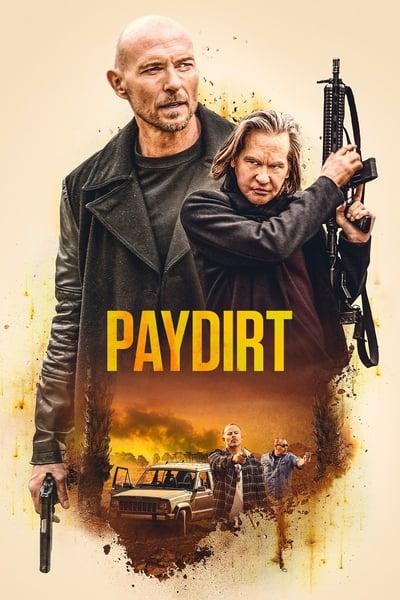 Paydirt 2020 1080p BluRay x265-RARBG