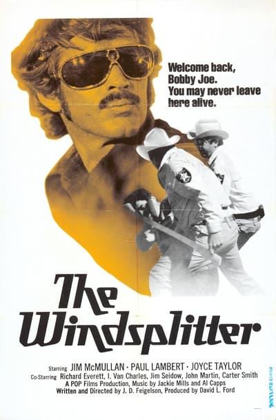 The Windsplitter 1971 1080p WEBRip x265-RARBG
