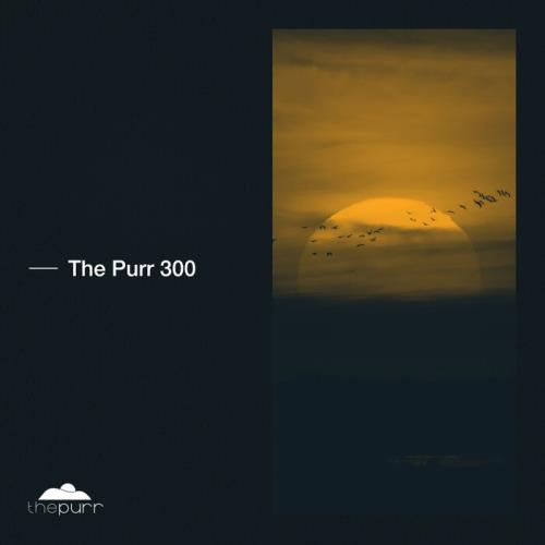 The Purr 300 (2021)